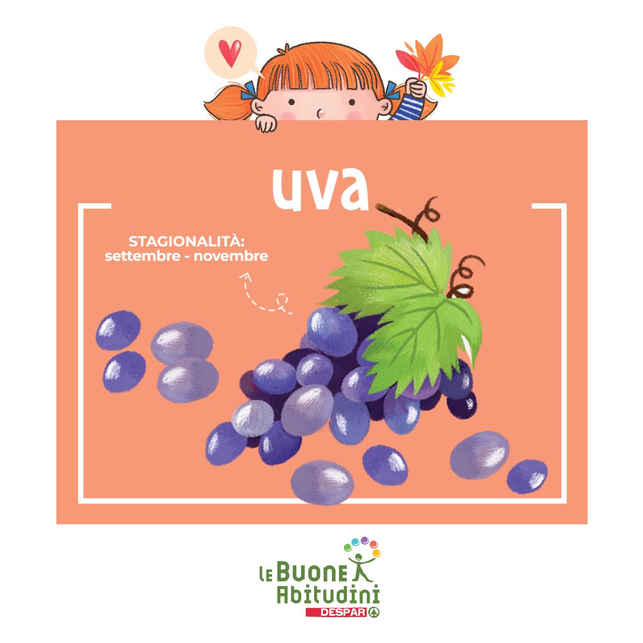 Uva: buona da mangiare e alleata della nostra salute!